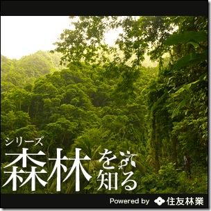 nng_sumitomoforestry_RCT2_121122