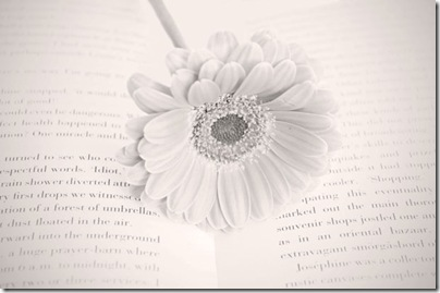 flower-on-the-book-1357741398aOa